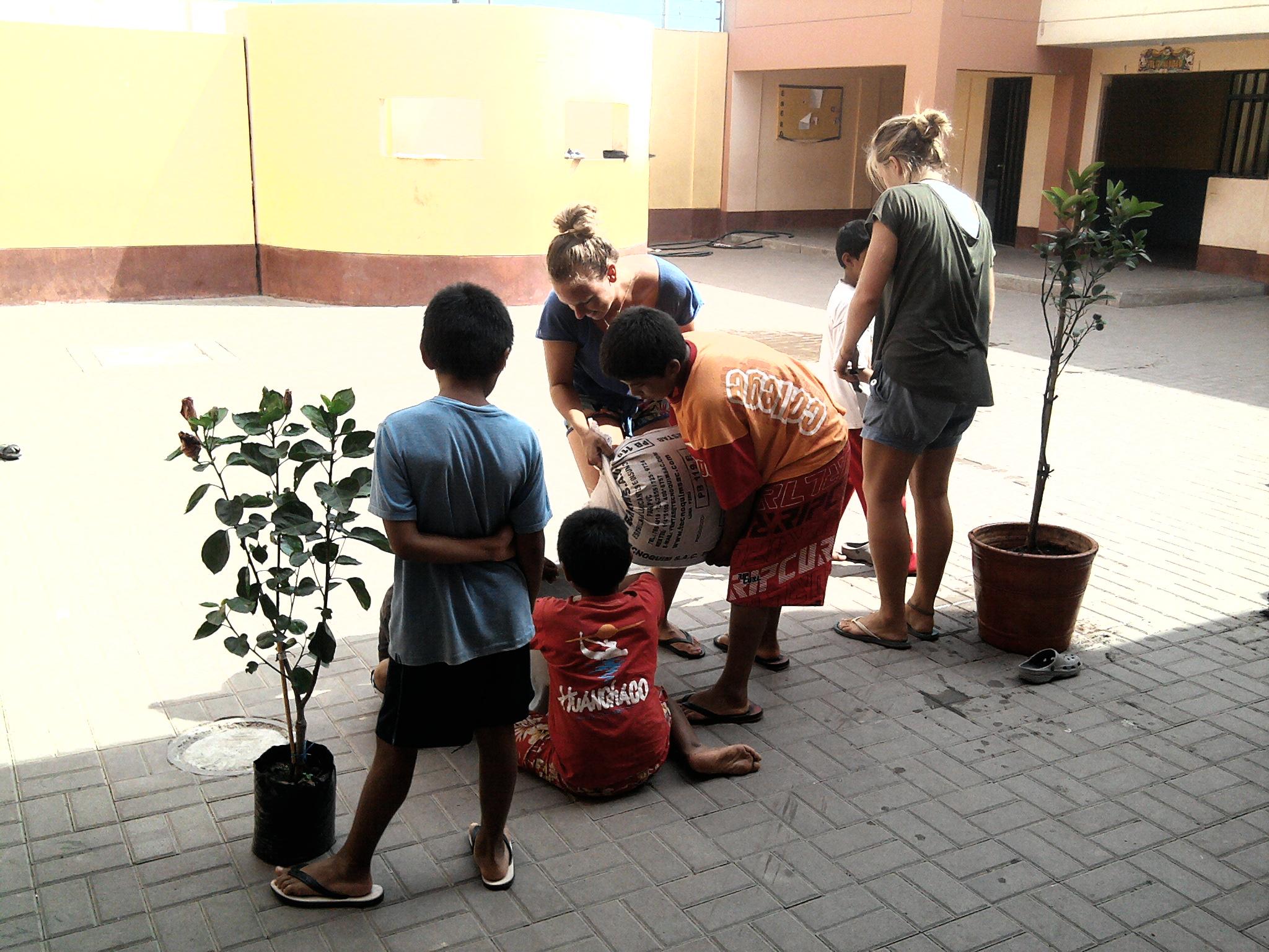 Freiwillige Arbeit